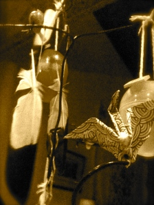 Mynah bird feather